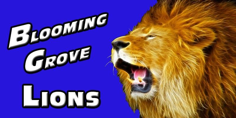 lion--logo1